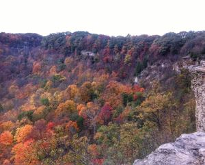 fall-image-from-dundas-peak-ontario